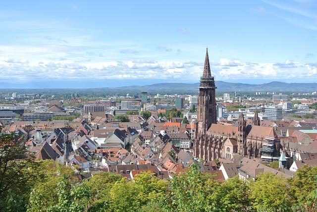 Blick über die Dächer Freiburgs