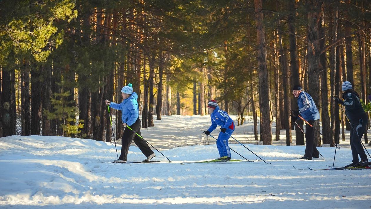 Skifreizeit, Langlauf, Kinder, Freizeit, Ferien, Schnee, Wald