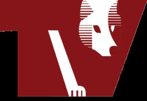 TV Wolfenweiler